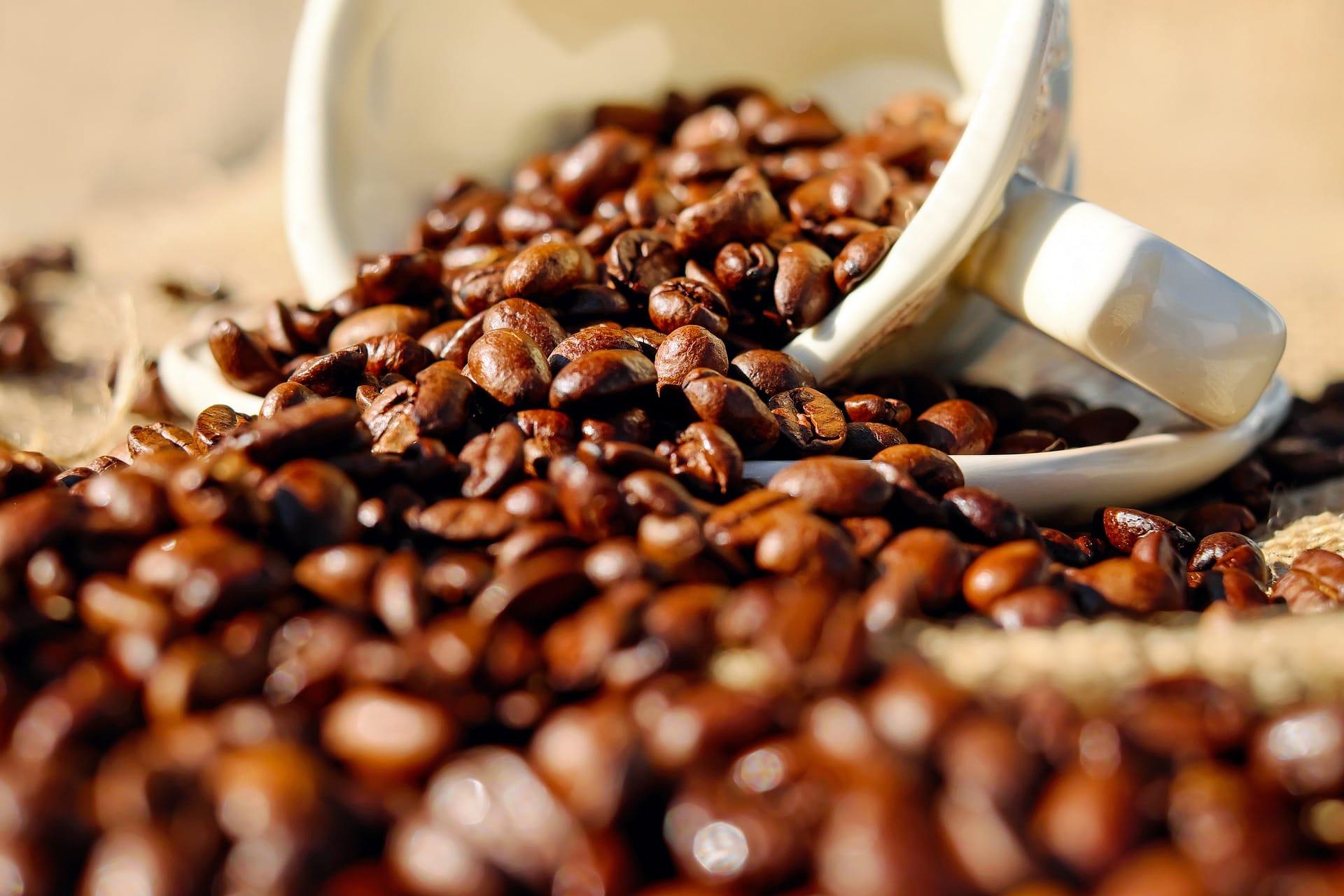 antioxidant caffeine mug coffee beans skin care beauty products